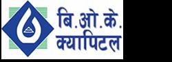bok-capital-logo