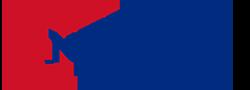 Neplays logo